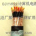 ZRB-DJYP2VP电线电缆(ZRB-DJYP) 图1